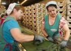 Andalucía aprueba planes para fomentar el comercio exterior