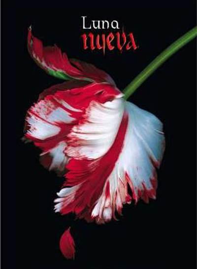 libros de vampiros Luna_nueva