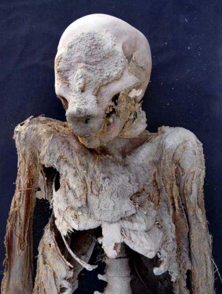 Misterio de las 18 momias 20100305elpepucul_3