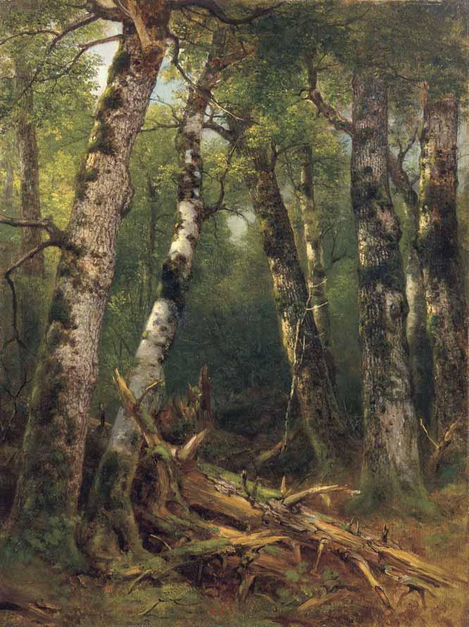 Grupo de árboles de A.B. Durand (1855-1857)