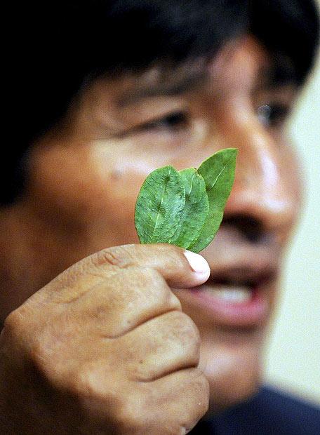 Morales sostiene hojas de coca