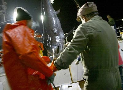 Pescadores con un pez espada- LALO R. VILLAR
