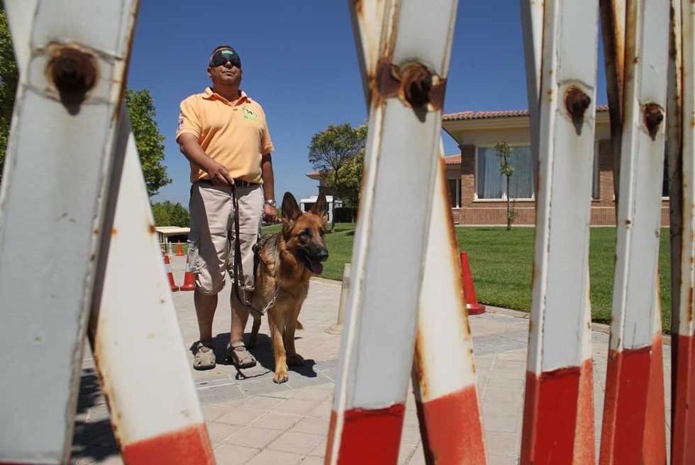 http://www.elpais.com/recorte/20100913elpmad_5/LCO340/Ies/Adiestramiento_perro_Fundacion_Once.jpg