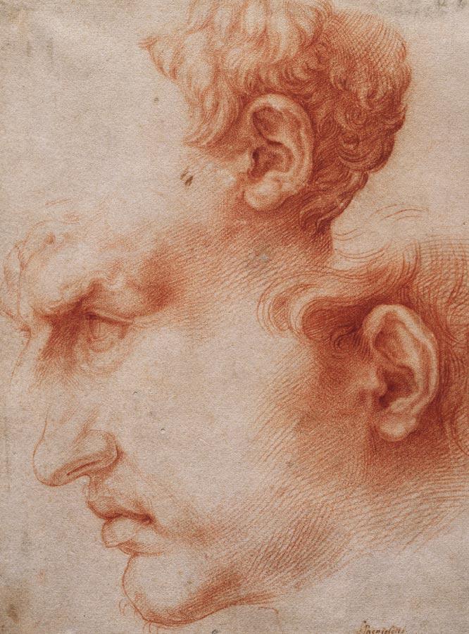 Estudios de cabeza de perfil, de José de Ribera.-