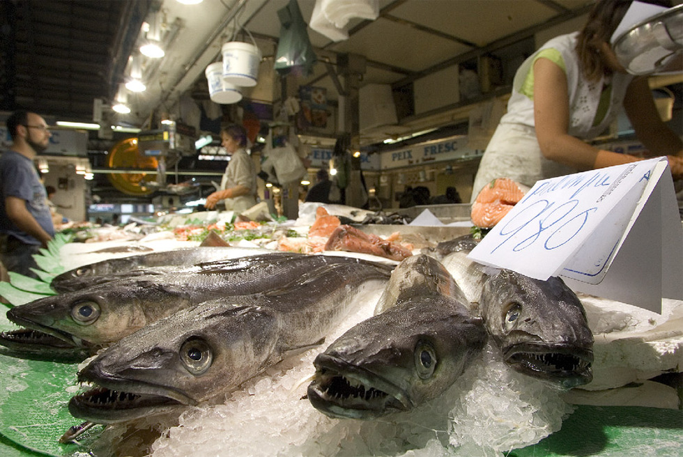 this fish contains mercury and so do you taiwan japan