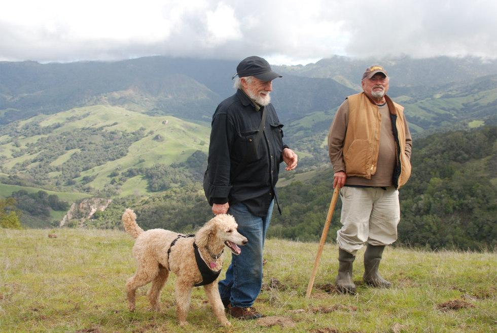 Fotogram de La práctica de los salvaje