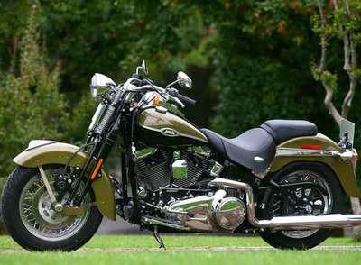 Forer@ y regalito Moto_Harley_Davidson