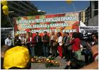 Los agricultores protestan en Felipe II