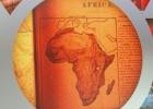 Transformar África y salvar la economía