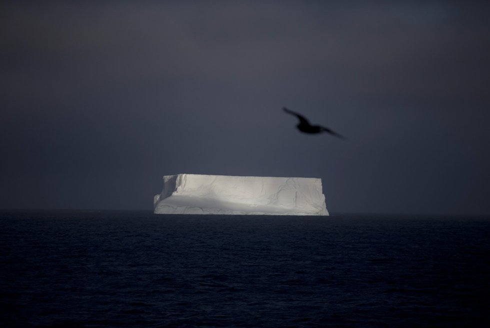 Los secretos de la Antártida (fotos) 1424427293_938053_1424427444_album_normal