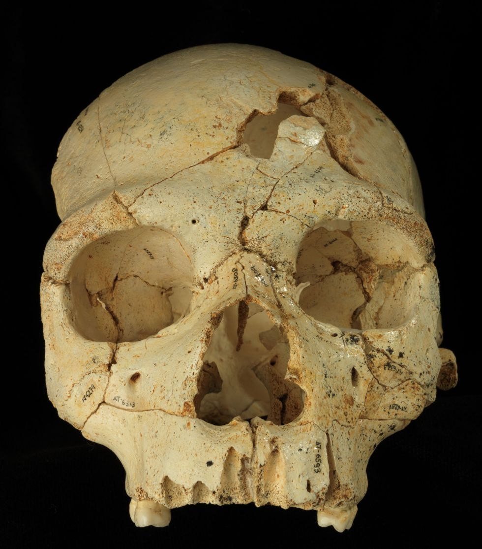 Un asesinato en la Sima de los Huesos 1432573429_619299_1432728532_noticia_grande
