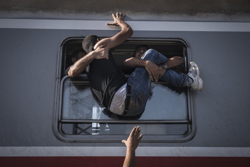 Resultado de imagem para 2016 world press photo