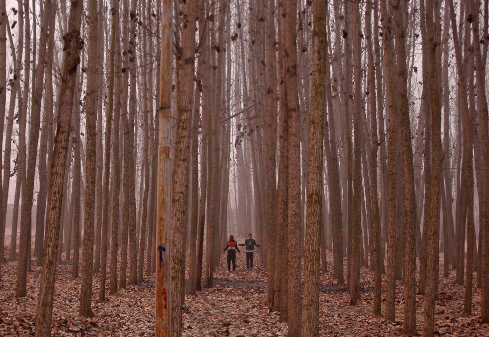 Dos hombres practican ejercicio entre unos árboles en las afueras de Srinagar (India).