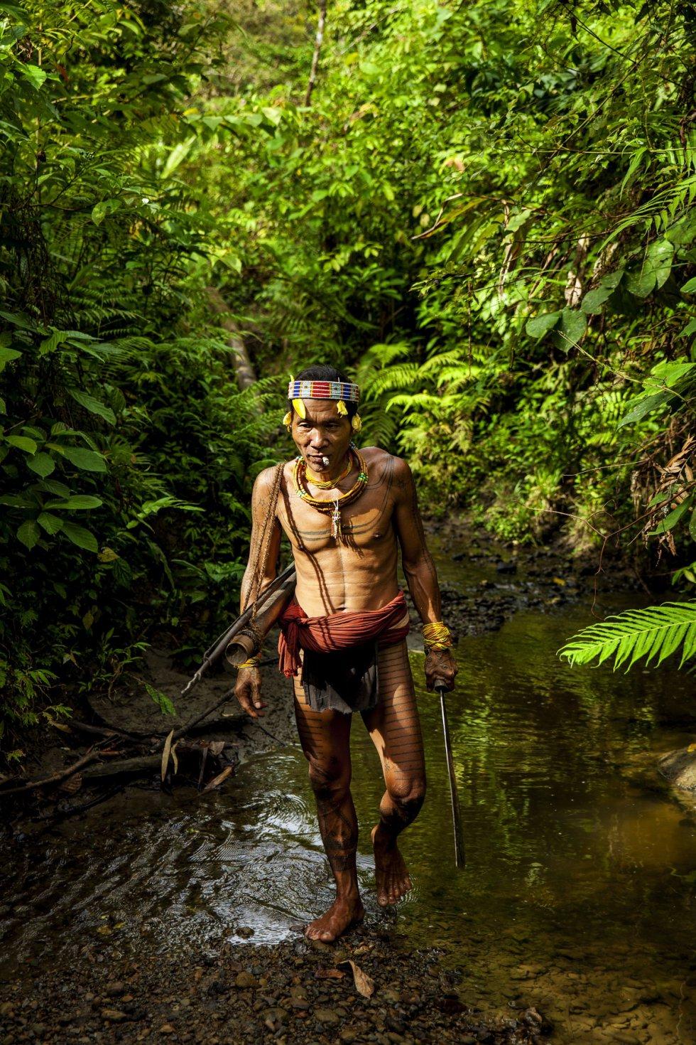Para los mentawai, todas las personas son iguales. Según los sikerei, las jerarquías no existen porque todos forman parte de la misma cultura y, por lo tanto, los mismos tabúes son válidos para todo el mundo. En la foto, el sikerei Aman Alangi Kunen en la selva de Siberut.