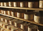 Locos por el queso asturiano