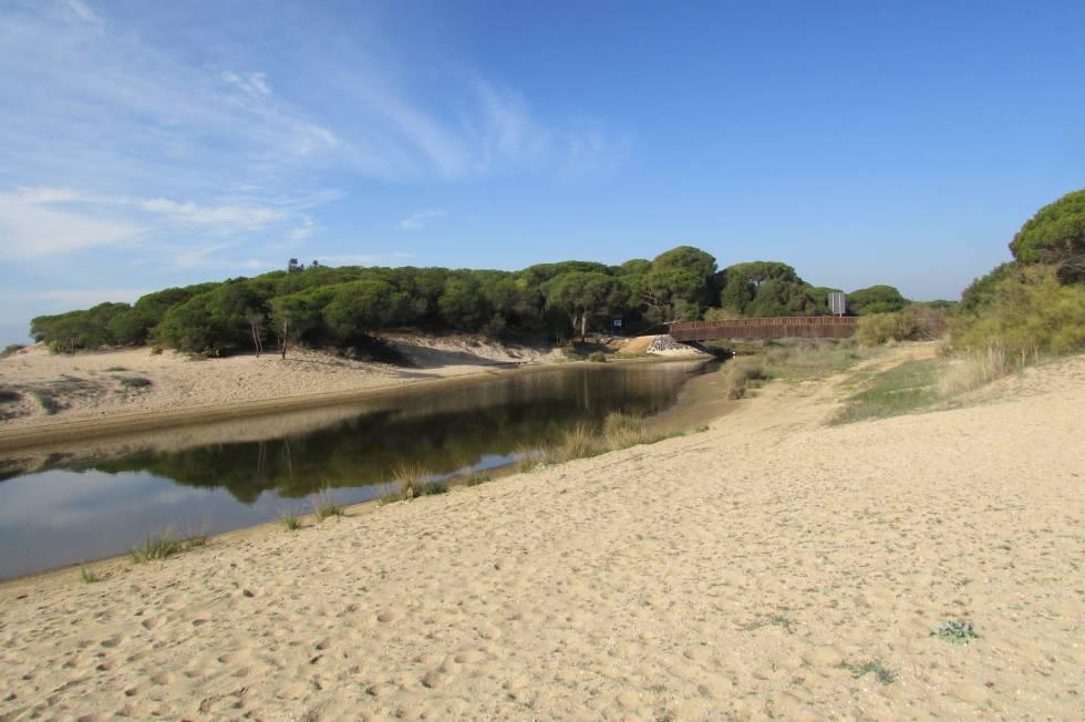Caño de la Culata (Cartaya, Huelva)