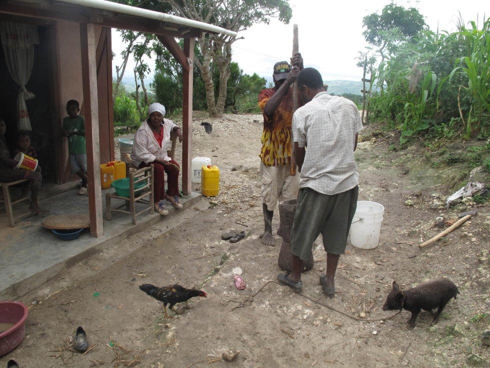 Haití después de enero de 2010 - Página 2 1401539352_166316_1401543077_album_normal