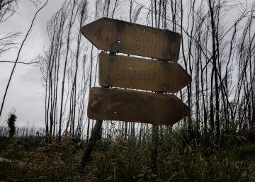 Las cenizas aún queman en Portugal