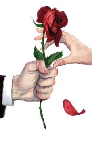 Rosa para regalar
