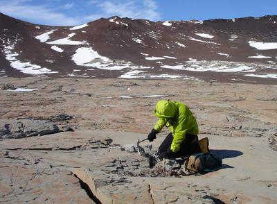 Fósiles en la Antártida