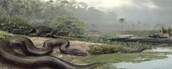 Recreación de la serpiente 'Titanoboa Cerrejonensis'