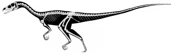 Un dinosaurio recién descubierto