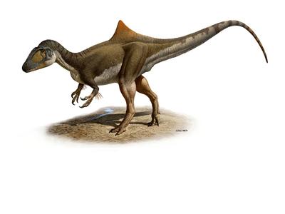 Hallado un nuevo dinosaurio en Cuenca