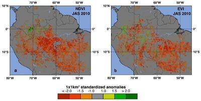 Sequía en el Amazonas
