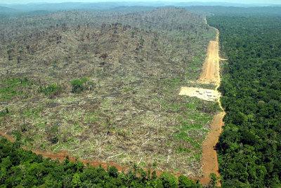 Vista aérea de una zona deforestada de la Amazonia