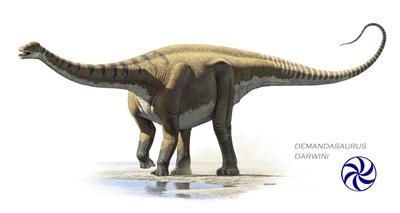 Presentación del dinosaurio