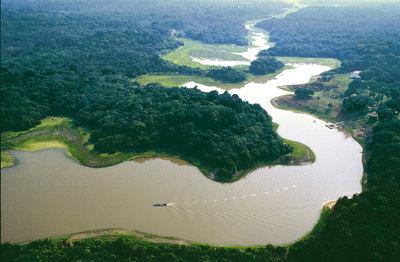 Street View llega al Amazonas