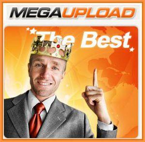 Google defiende a Megaupload y Hotfile