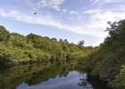 El Amazonas, en alta definición