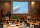 Los I+D mundiales de Microsoft, en Mallorca