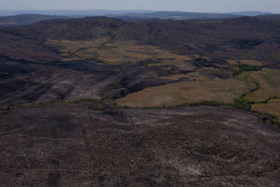 Duas semanas de fogo reduziram a cinzas o coração da Chapada dos Veadeiros: os responsáveis pelo Parque Nacional apontam para um incêndio intencional, mas até agora não foram encontradas provas