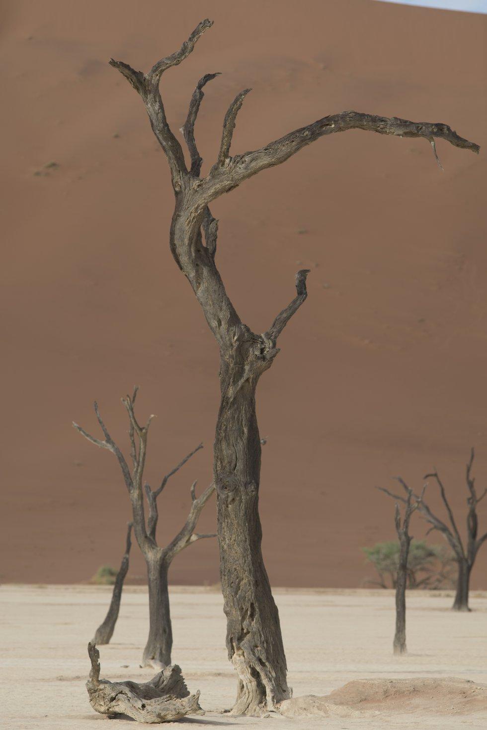 """As imagens captadas retratam elementos fantásticos em meio ao nada. E não é por acaso. Namíbia quer dizer algo como """"imenso espaço vazio""""."""