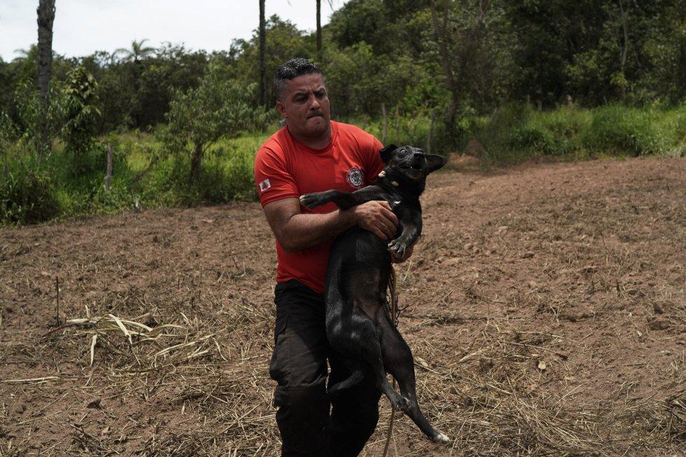O bombeiro Leoncio Valverdes resgatou o cachorrinho que passou dois amarrado aguardando resgate em uma casa atingida pela lama em Brumadinho.