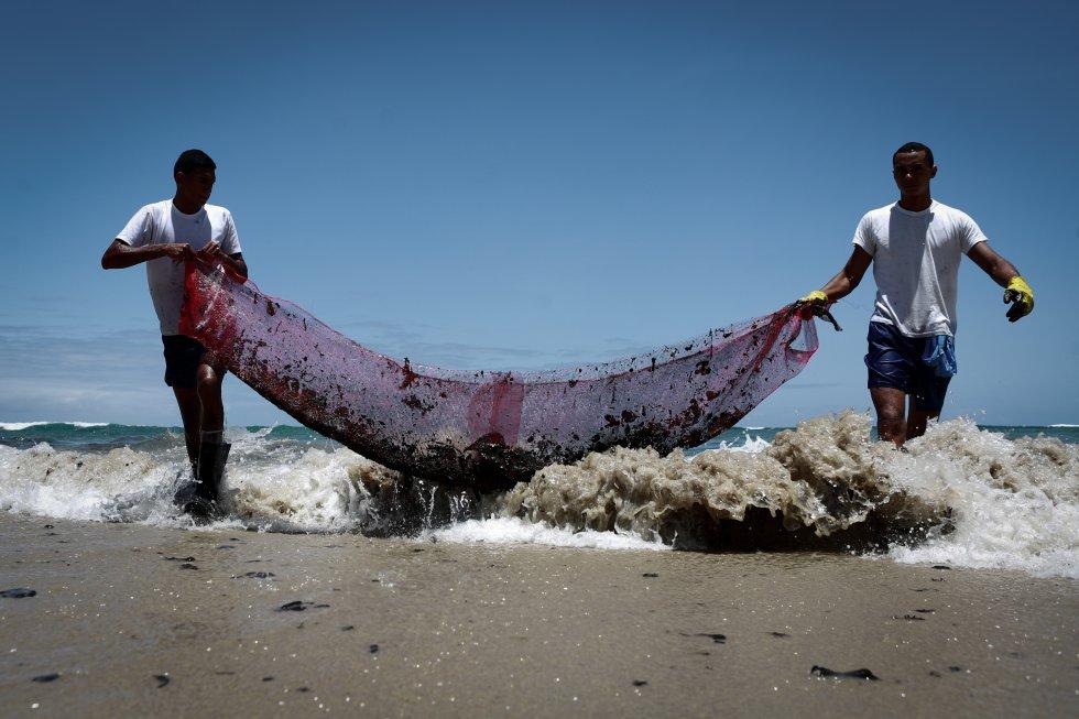 Praia do Paiva, Cabo de Santo Agostinho, Pernambuco. Voluntários fazem a remoção de porções de óleo com rede improvisada