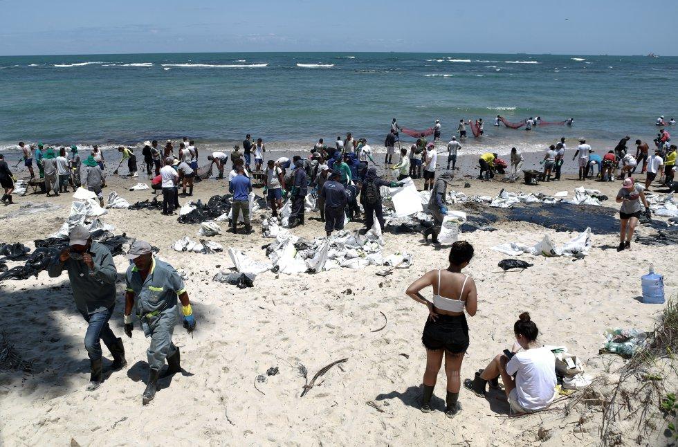 Centenas de voluntários trabalharam para a remoção das manchas de óleo. Com ferramentas, sacos e equipamentos provenientes de doações, o grupo trabalhou durante todo o dia na Praia do Paiva, Cabo de Santo Agostinho, Pernambuco.