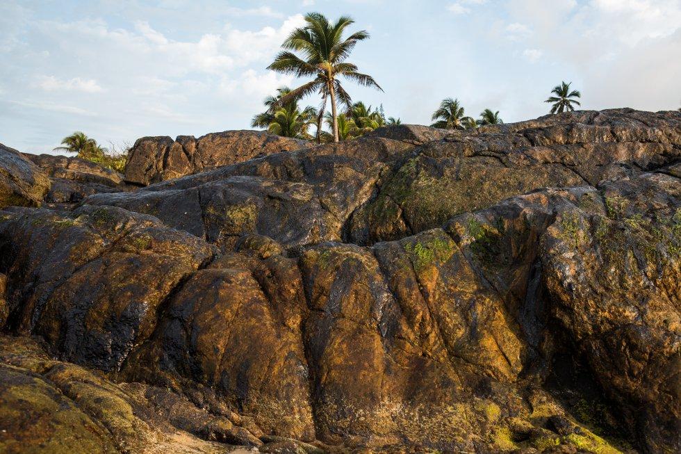 Cantada em verso e prosa por mestres da Bossa Nova, como Vinícius de Moraes, Toquinho e Baden Powell, a praia de Itapuã, em Salvador, Bahia, foi uma das mais atingidas pelo óleo. Os funcionários da prefeitura e voluntários fizeram uma limpeza, mas ficaram resíduos.