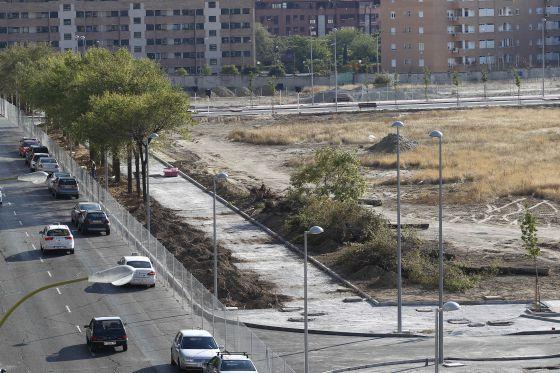 El ayuntamiento autoriza la tala de 147 rboles en for Tala de arboles madrid