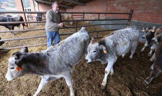 Los agricultores ecológicos crecen un 10% en Cataluña en un año ...