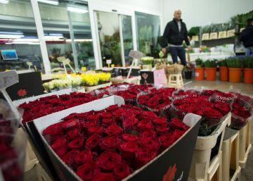 Los floristas prevén una caída en la venta de rosas en Sant Jordi por la proximidad de la Semana Santa