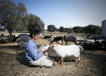 La filósofa pastora de la Casa de Campo