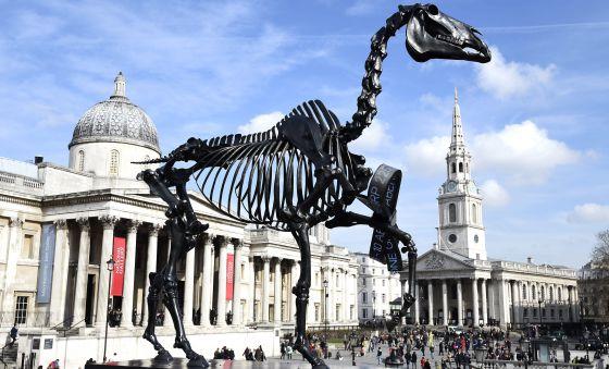 El esqueleto de un caballo gigante, en Trafalgar Square | Cultura ...