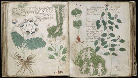O livro mais misterioso do mundo cultura el pa s brasil for Libros de botanica pdf