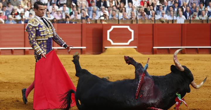 viva el toro chapter summaries Toro translated from spanish to english including synonyms,definitions,and related wordsstart studying viva el toro summaries for each chaptersee authoritative.