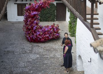 Córdoba entrega los ?Oscar? de los patios de flores