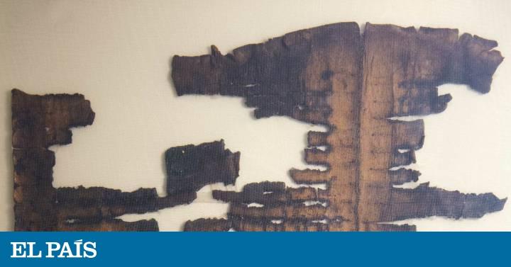 manuscrito mais misterioso do mar morto narra a saída de noé após o