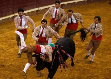 El IVA de los toros crea un cisma en el partido socialista portugués